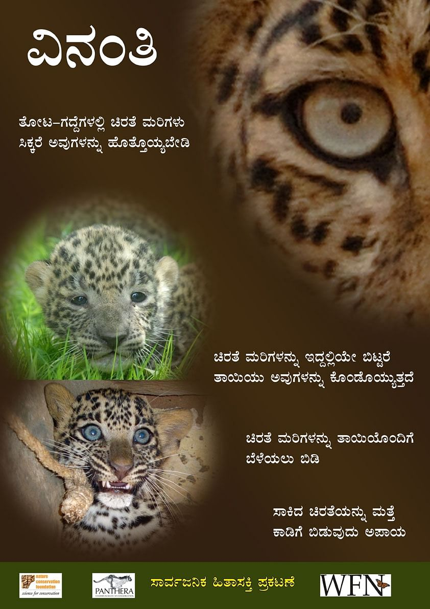 """Poster for public information campaigns to dissuade people from """"rescuing"""" leopard cubs"""