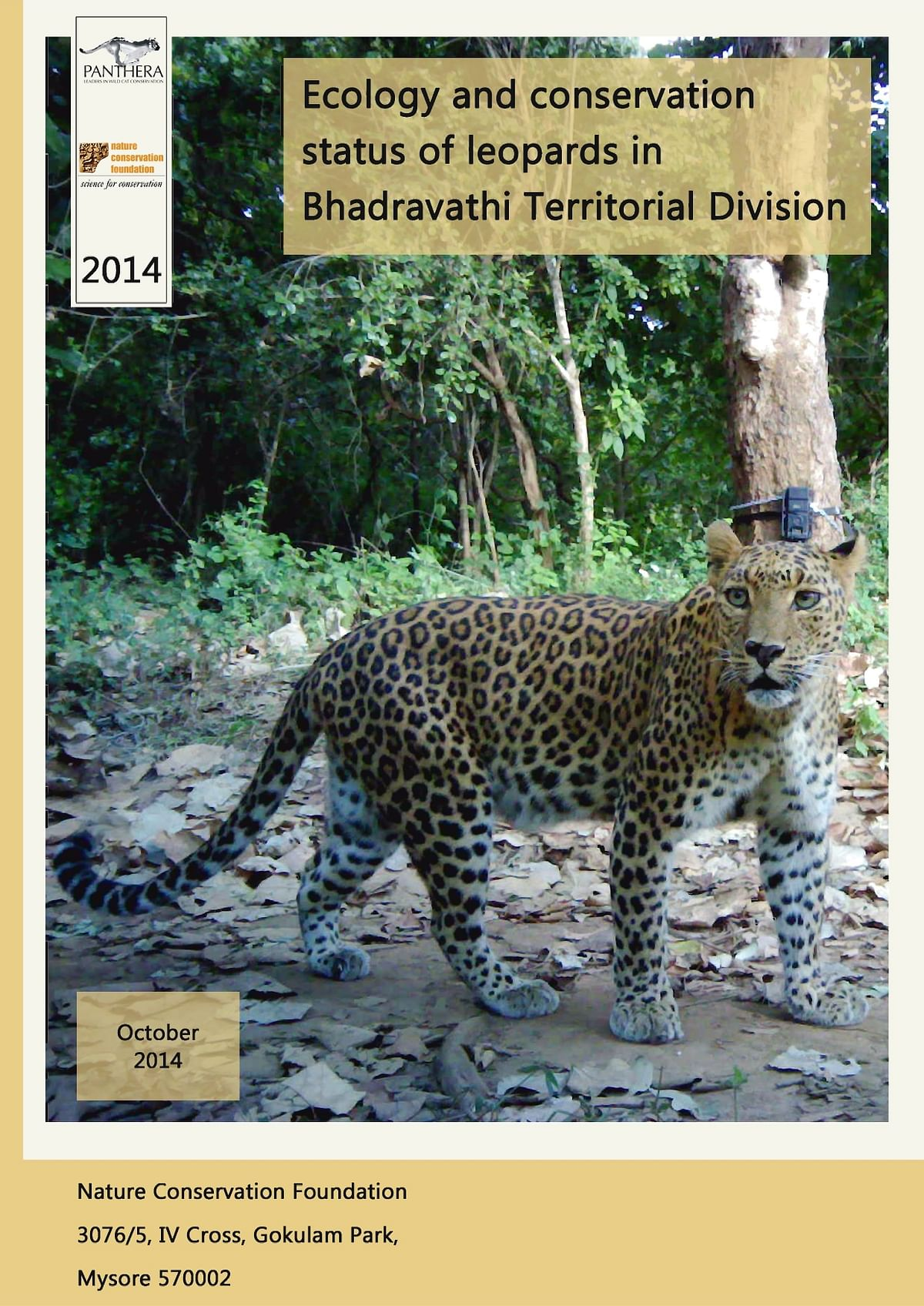 Ecology and conservation status of leopards in Bhadravathi Territorial Division