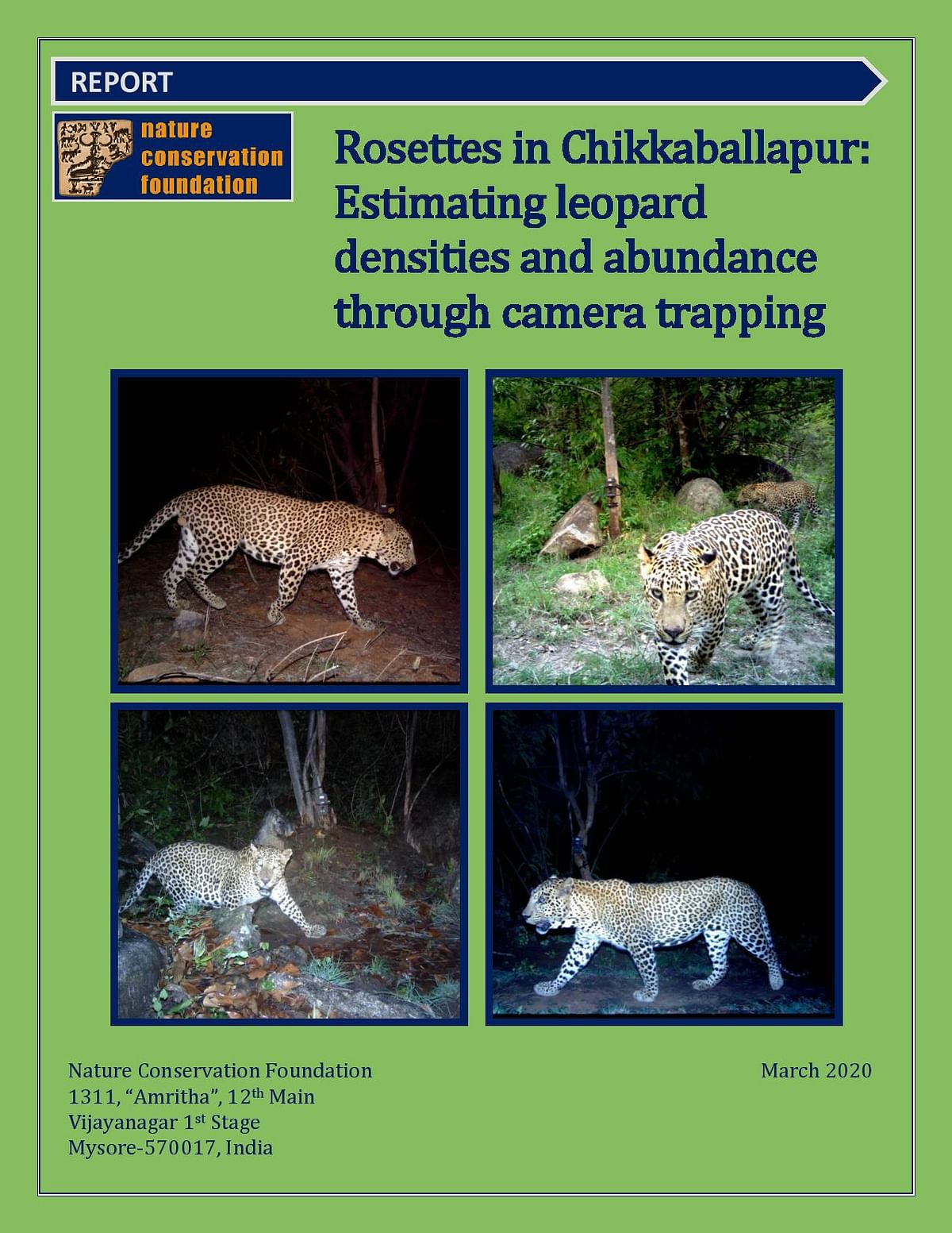 Rosettes in Chikkaballapur: Estimating leopard densities and abundance through camera trapping