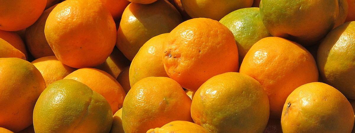 Nagpur oranges