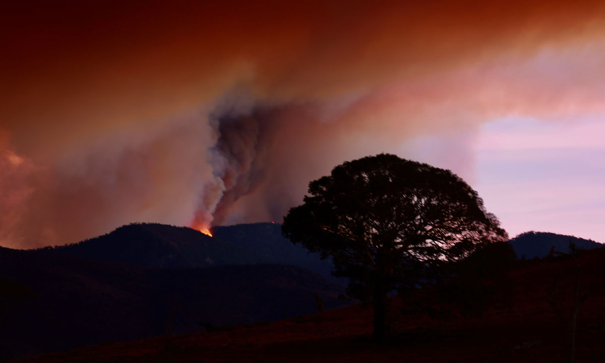 Heavy rains could put out remaining bushfires in Australian state