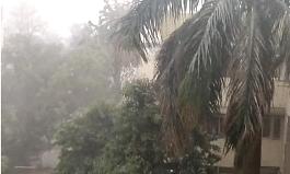 Rain, gusty winds lower Delhi's soaring temperature