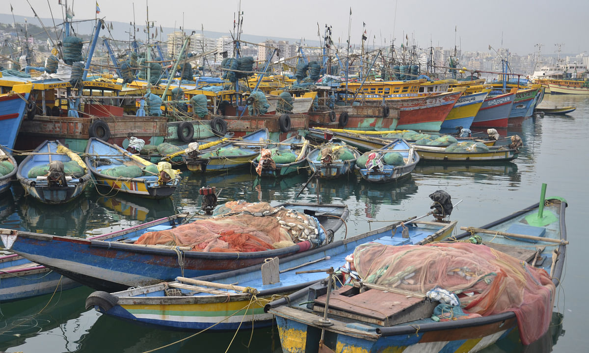 Cabinet clears scheme for Blue Revolution through development of fisheries sector