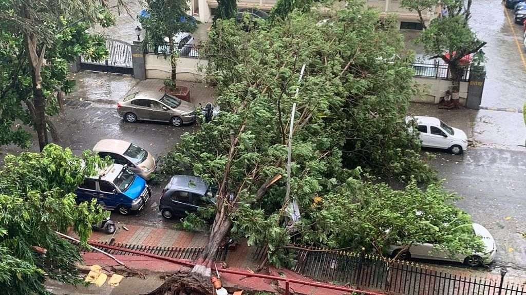Cyclone Nisarga crosses Maharashtra coast near Alibag, uproots trees,  blows away hoardings