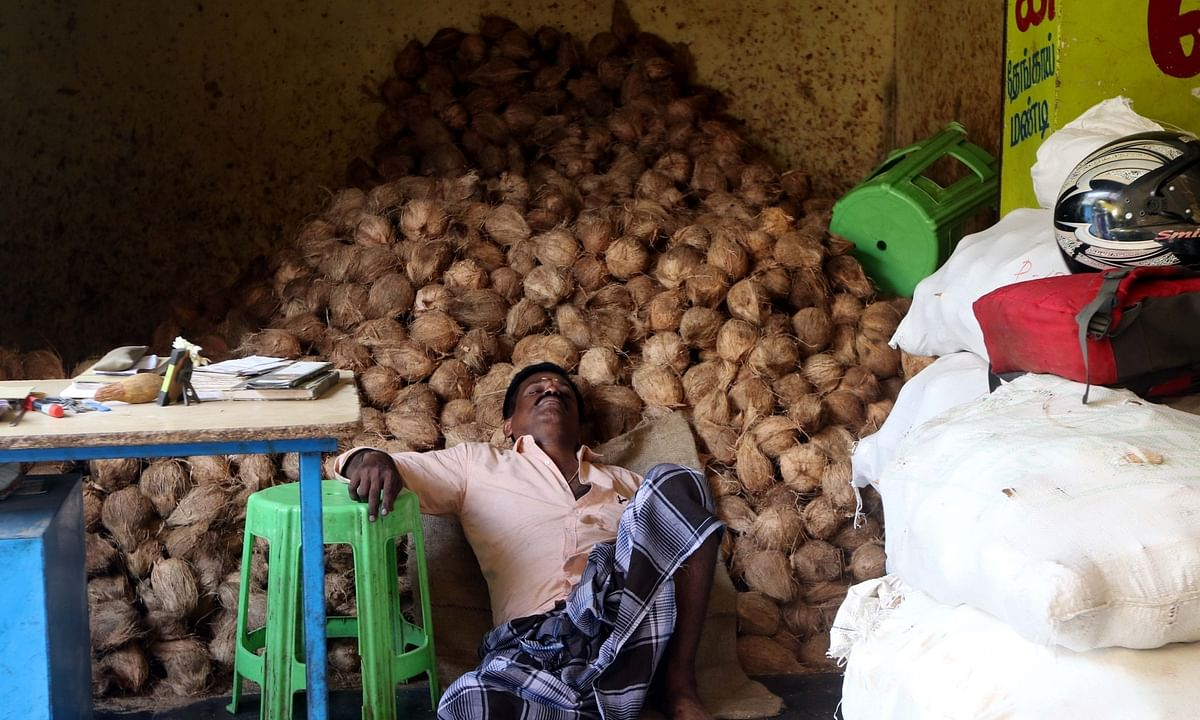 MSP for mature de-husked coconut declared at Rs 2,700 per quintal for season 2020