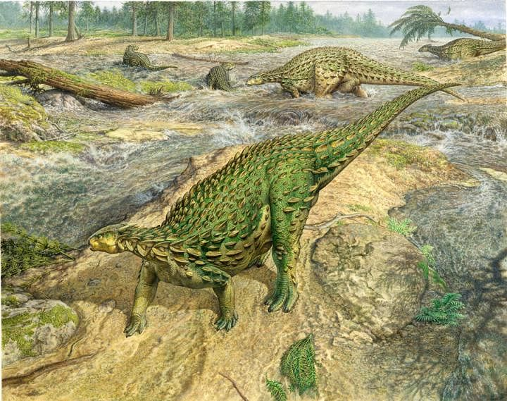 The first complete dinosaur skeleton ever identified has finally been studied in detail and found its place in the dinosaur family tree, completing a project that began more than a century and a half ago.
