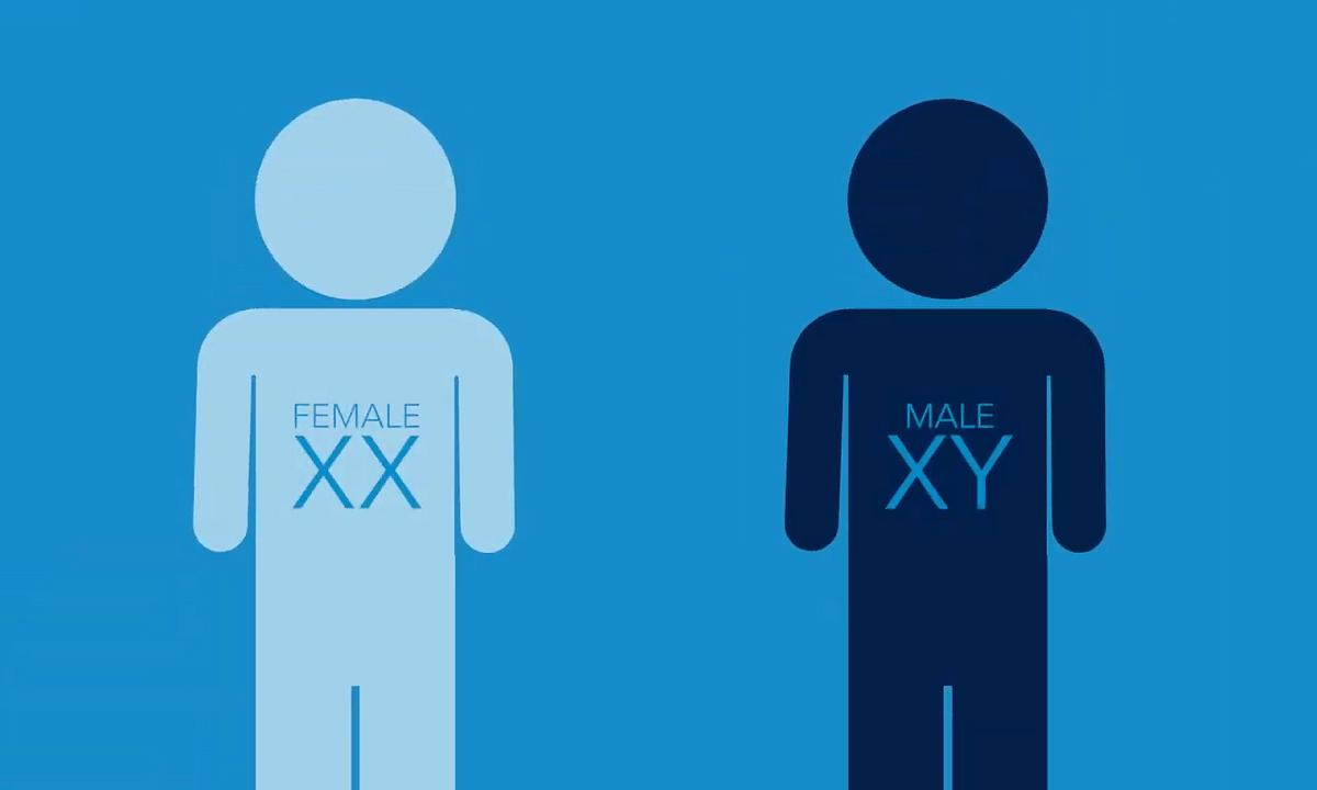 Female chromosomes offer resilience to Alzheimer's