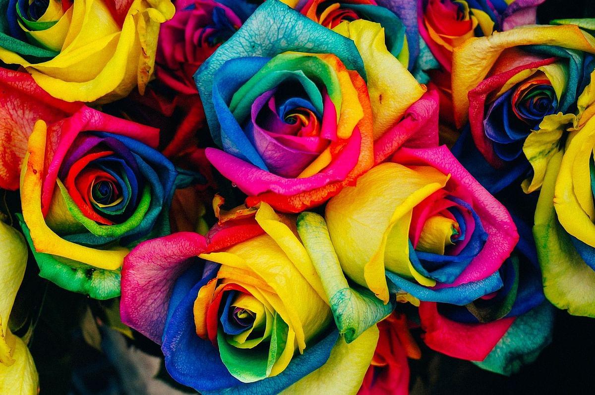 Colours evoke similar feelings around the world
