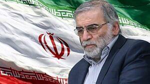 Iran blames Israel for killing top nuclear scientist