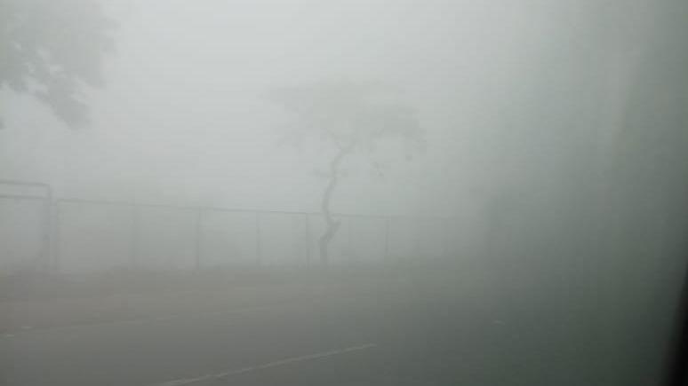 Dense fog, zero visibility in Delhi, Lucknow, Amritsar