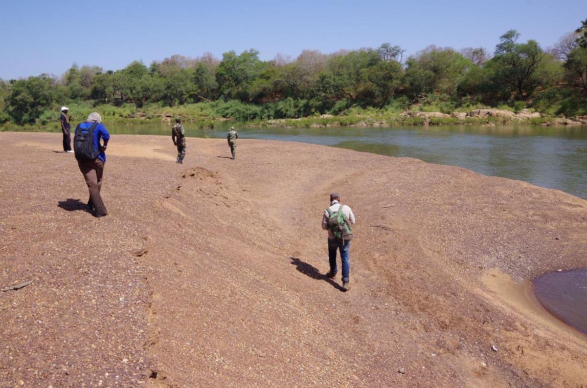 Team fieldwalking along the Gambia River, Senegal