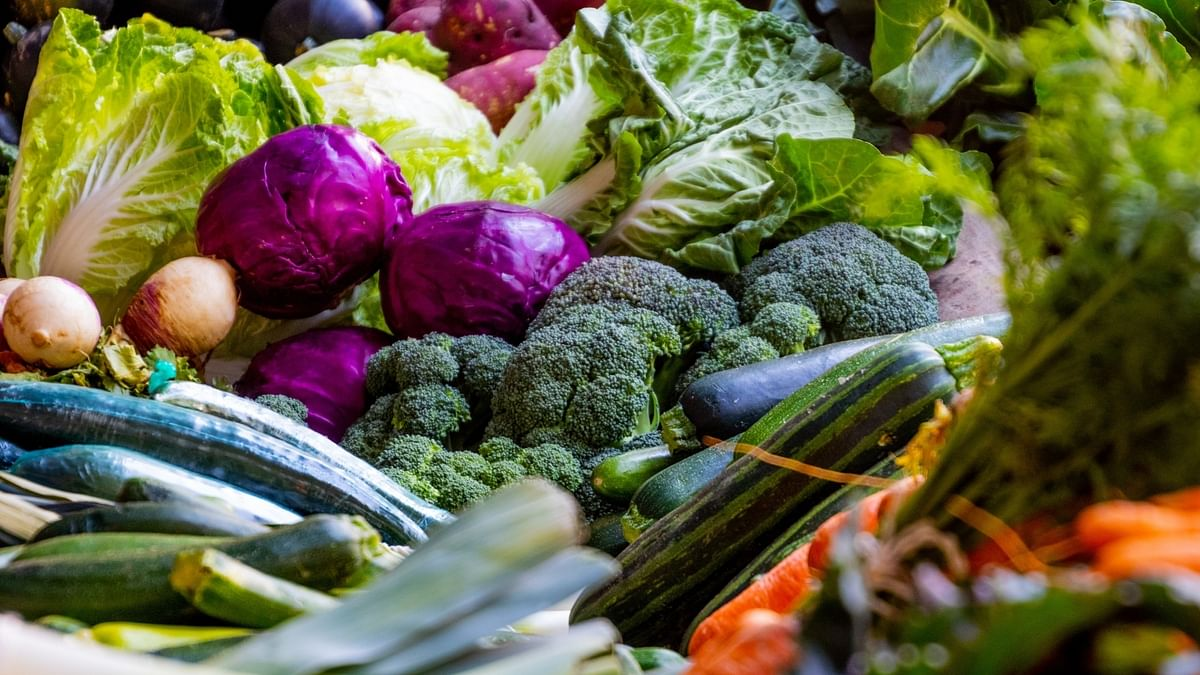 UN report says 17% of all food available at consumer levels is wasted