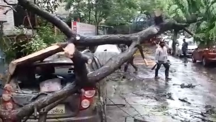 Cyclone Tauktae storms over Mumbai, razes trees, damages homes