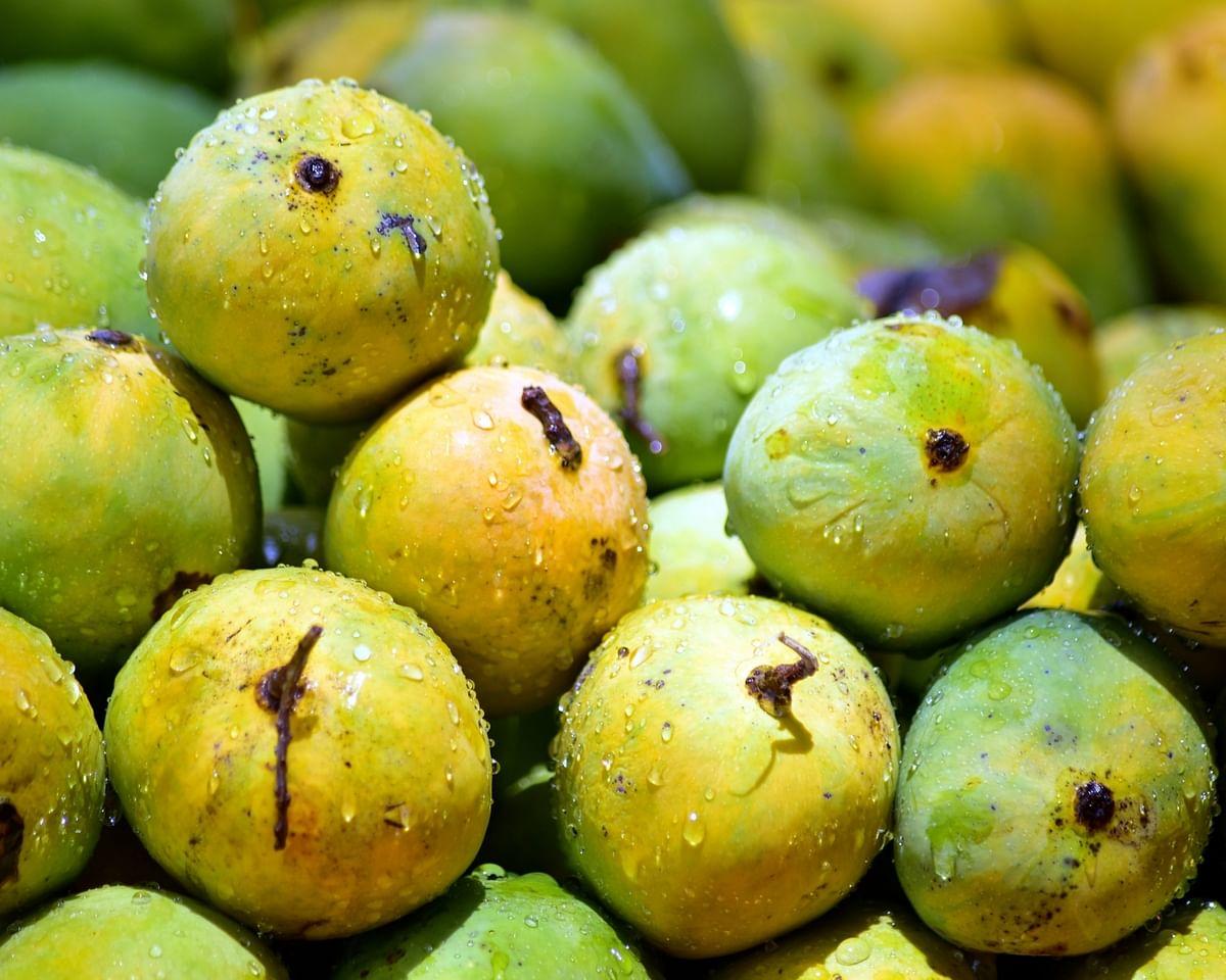 APEDA organises virtual buyer-seller meet for boosting mango exports to South Korea