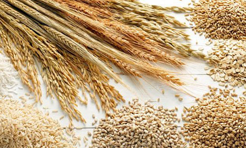 India expands cereal export footprints by shipping rice, wheat and other cereals to newer destinations