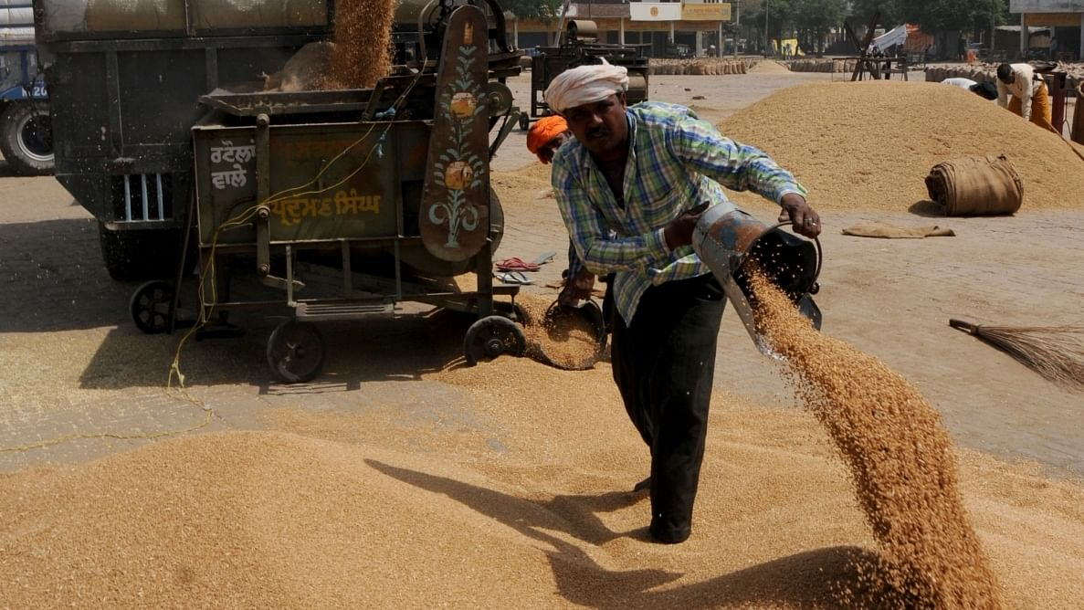 Cabinet nod for allocation of additional food grain to NFSA beneficiaries for another five months