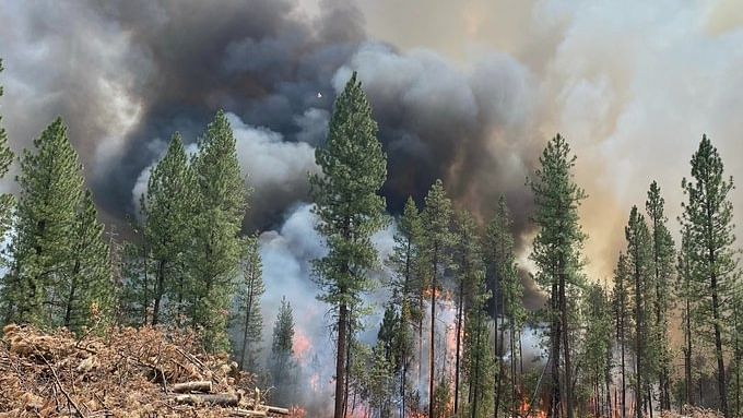 Oregon wildfire scorches area 1.5 times the size of NYC