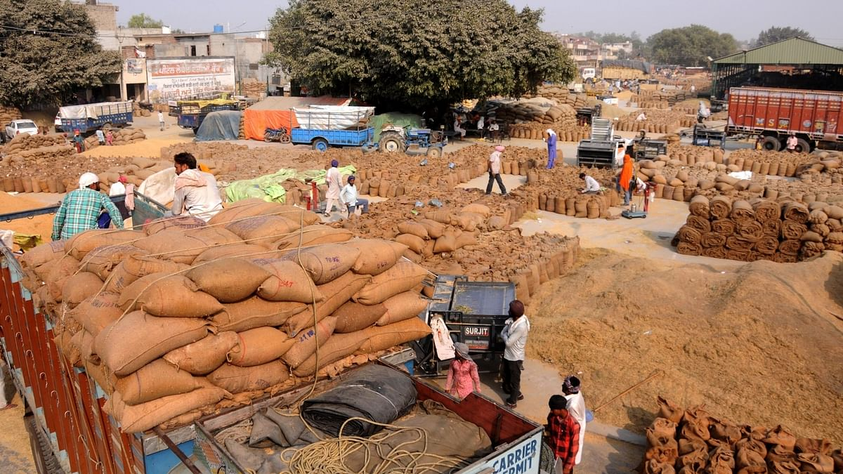 India's wholesale price inflation sequentially eases to 11.16% in July