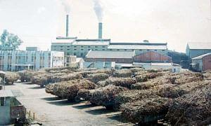 File photo of a sugar mill