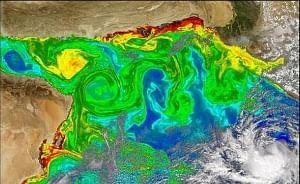 How microscopic marine algae impact global climate and Indian monsoon