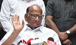 'Don't politicise national security issues': Pawar chides Rahul