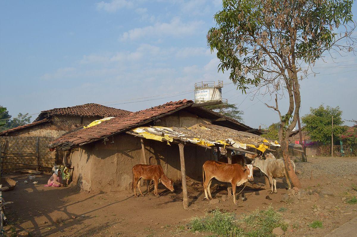 Chilati village in Chikhaldhara taluka.