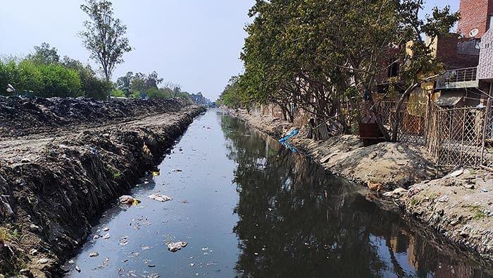 The drain in Bhagirathi Vihar where Bhure Ali's corpse was found.