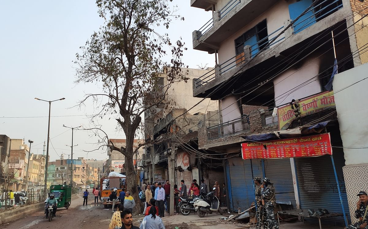 The jamun tree on Karawal Nagar road that became a border when Hindus and Muslims clashed on February 23, 24 and 25.