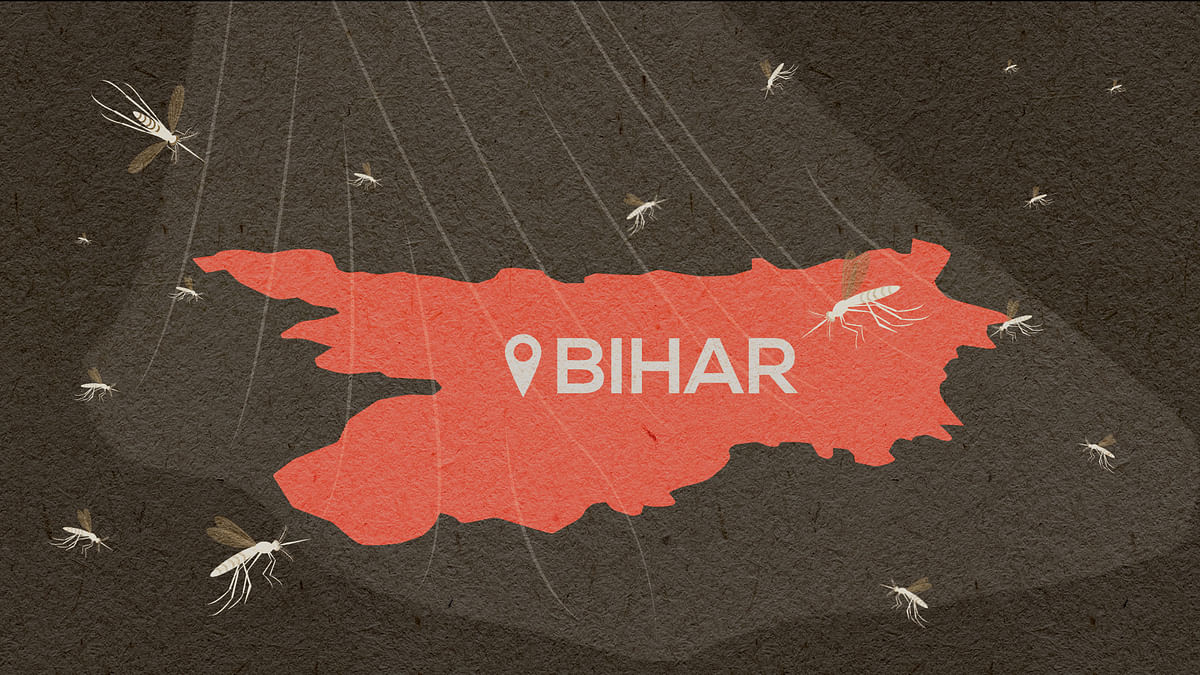 Bihar's returning migrants are battling yet another problem — mosquitoes