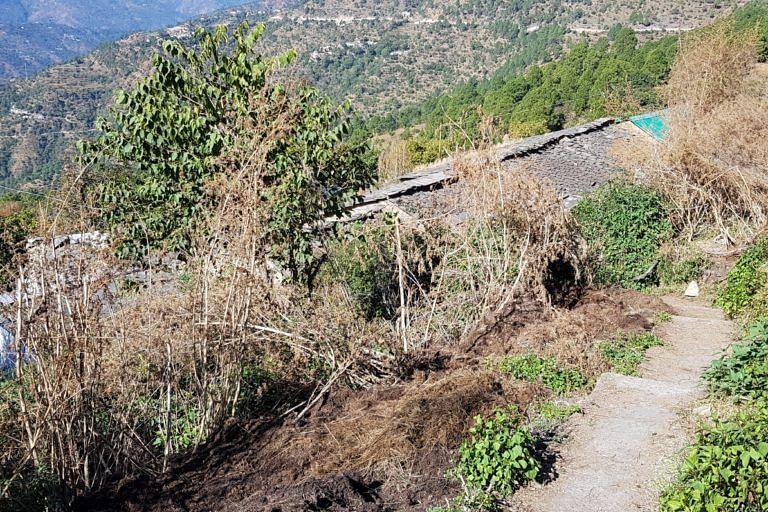 उत्तराखंड के करीब 1000  भूतियां गावों में कोई नहीं रहता. इसके कारण आसपास की झाड़ियां बहुत बढ़ गई है, जिनमें तेंदुआ छिप जाते है.
