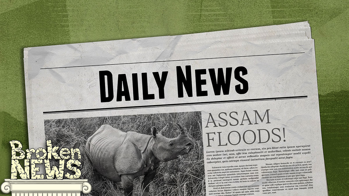 Dear 'national' media, stories on Assam floods must go beyond the one-horned rhino