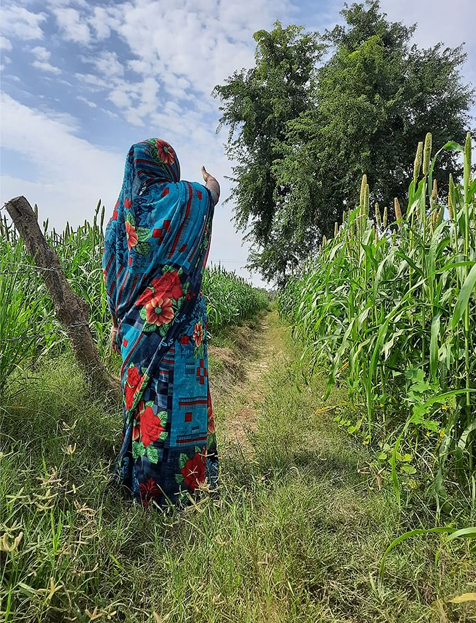 Asha's mother in the fields where her daughter was assaulted.