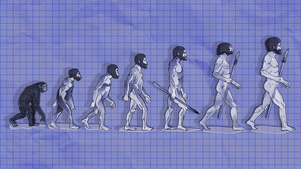 क्या मानव छठी विलुप्ति का पहला शिकार है