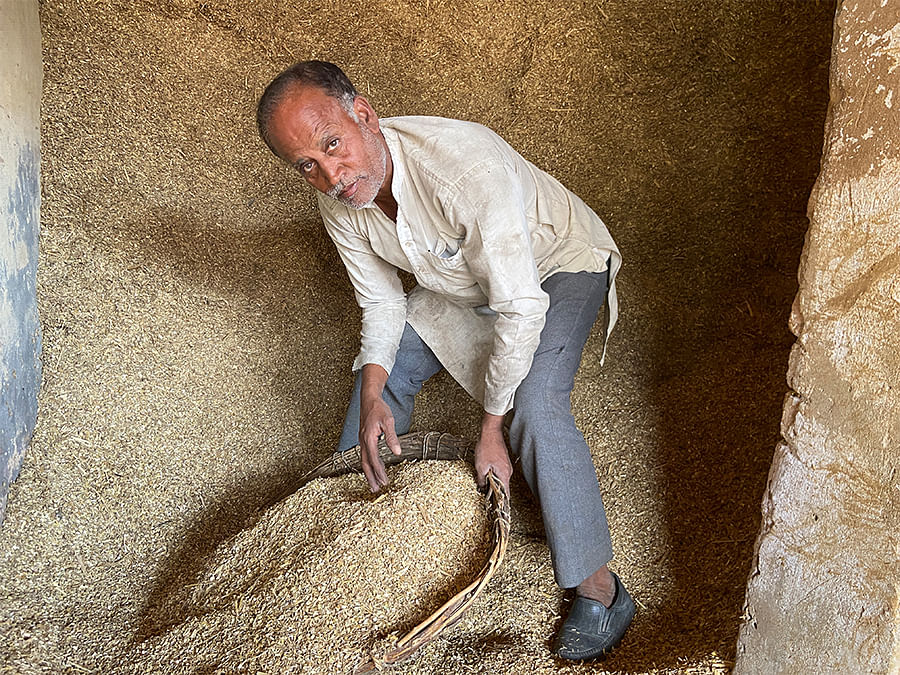 Padam Singh uses much of the stubble from his field for fodder.