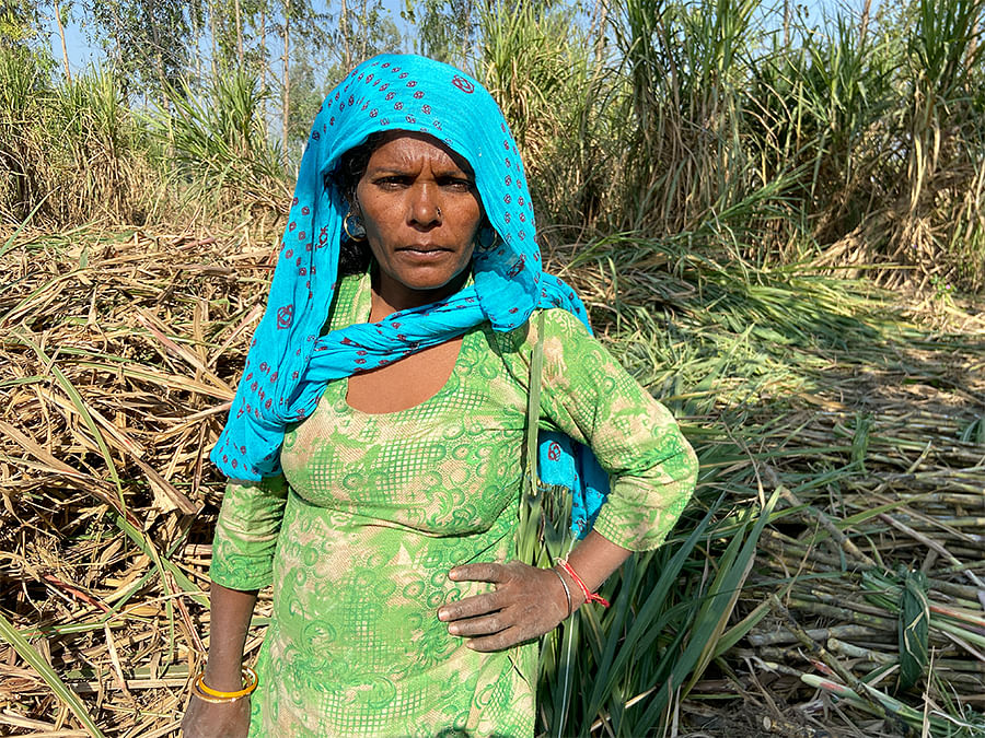 Tarawati earns Rs 400 a day cleaning and collecting sugarcane stalks.