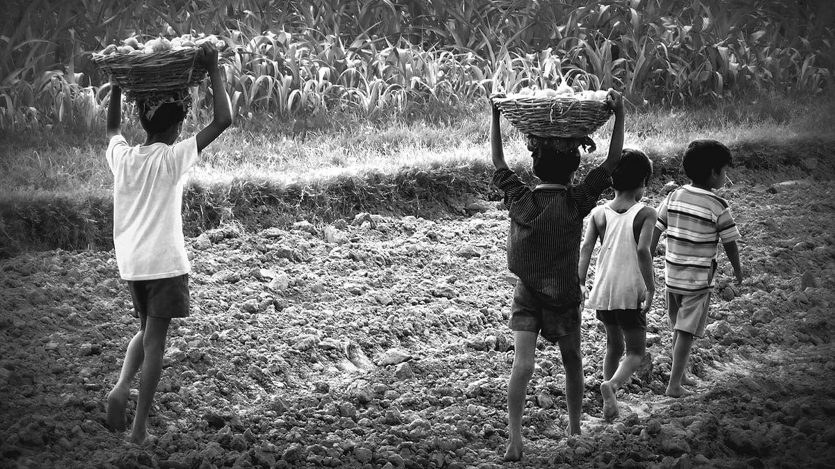 दलित बच्चों पर कहर बन रहा है फूलों की खेती का जहर: रिपोर्ट में खुलासा