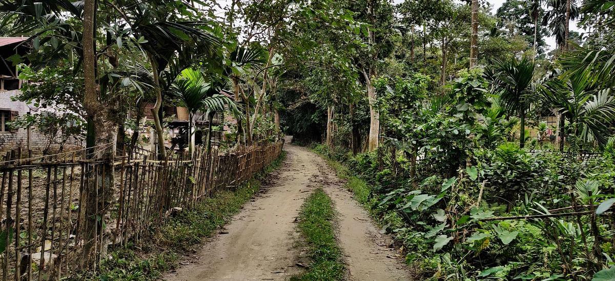 The road to Notun Rangagora village.