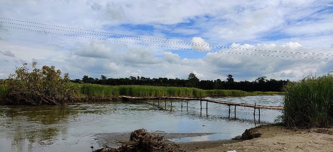 Hesuli's villagers have built a bridge over the new stream to reach their fields on the other side.