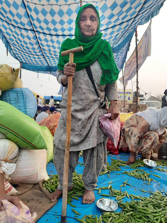 Kripal Kaur, 70, who left her home in Punjab's Singur.