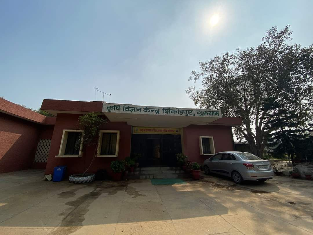 गुरुग्राम के शिकोहपुर में स्थित कृषि विज्ञान केंद्र