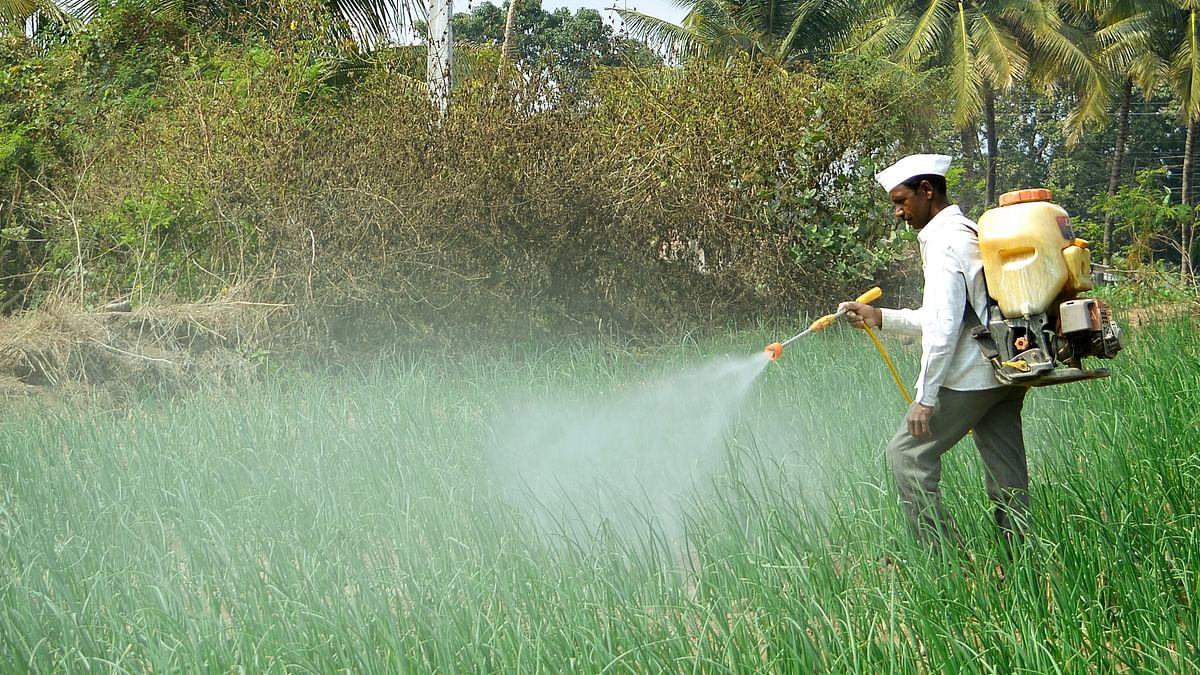 कीटनाशकों की वजह से दुनिया में खेती की जमीन का एक तिहाई हिस्सा खतरे में