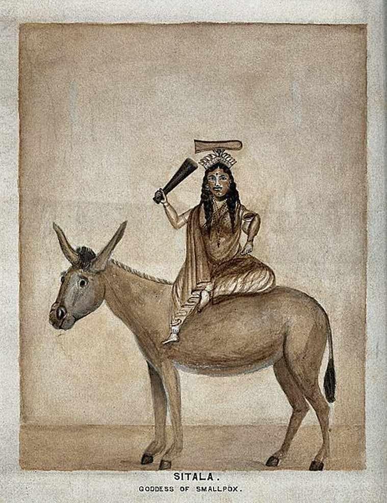 चेचक को हमारा समाज आज भी माता का शाप मानता है और उसके शमन के लिए शीतला माता की पूजा करता है