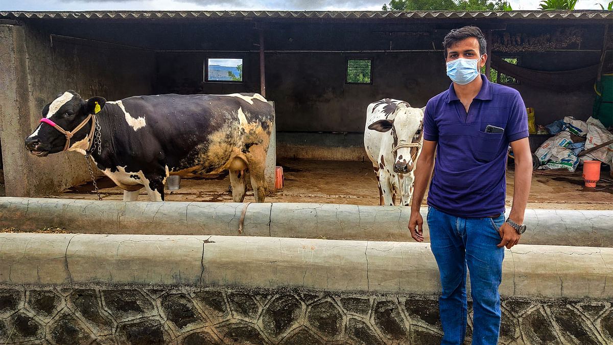 Covid crash: Why rural Maharashtra's dairy farmers are out on the roads