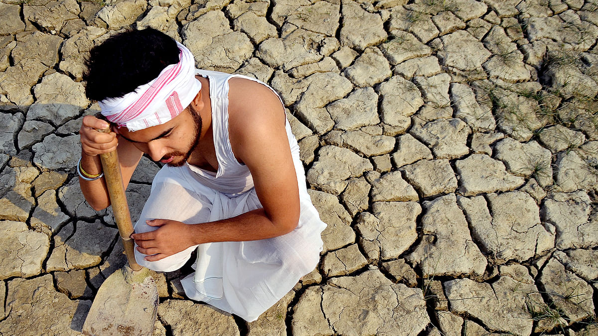 Creeping disaster: Over half of India's soil is degraded
