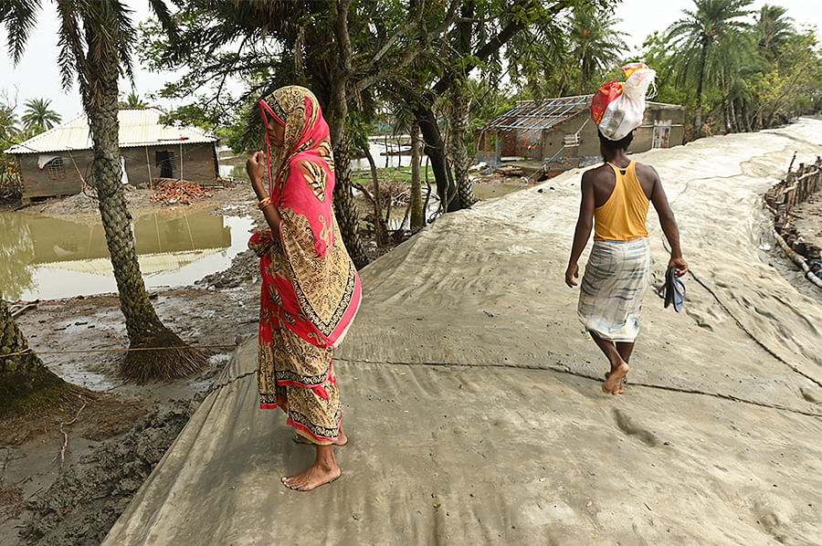 The collective length of embankments in the Sundarbans is around 3,500 km. Mud embankments need the support of mangroves, and the loss of the latter has increased the pressure on the embankments. After Yaas, geo-jute was used to stop saline water from leaking into the land.