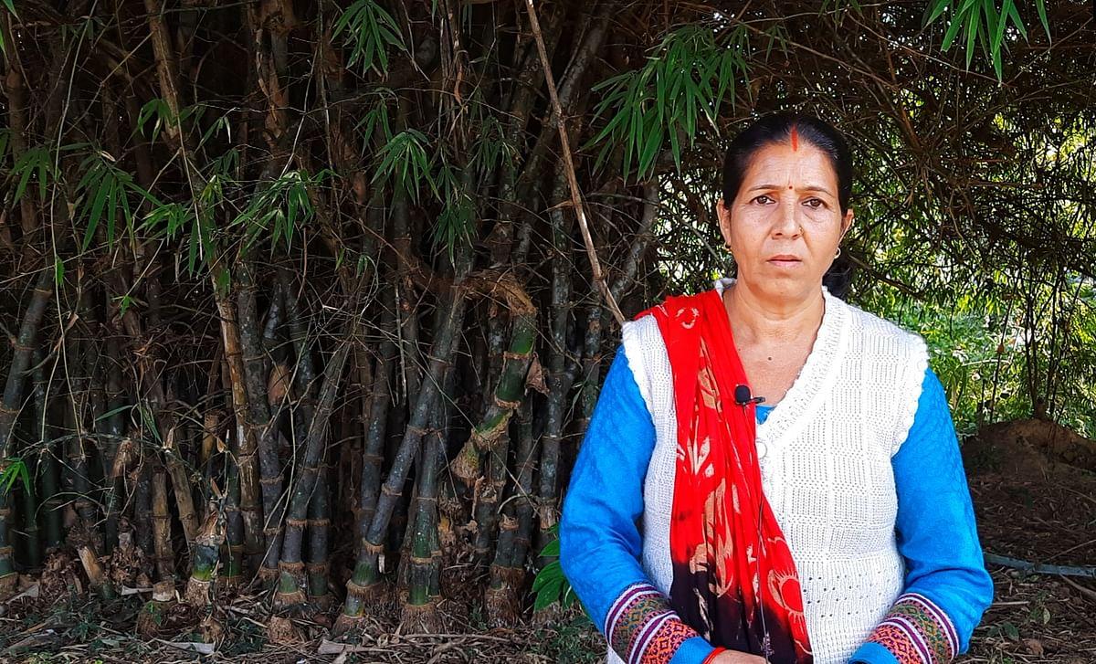 आशा पांडे कहती हैं कि जंगल का प्रबंधन करने में ग्रामीणों की अहम भूमिका होती है