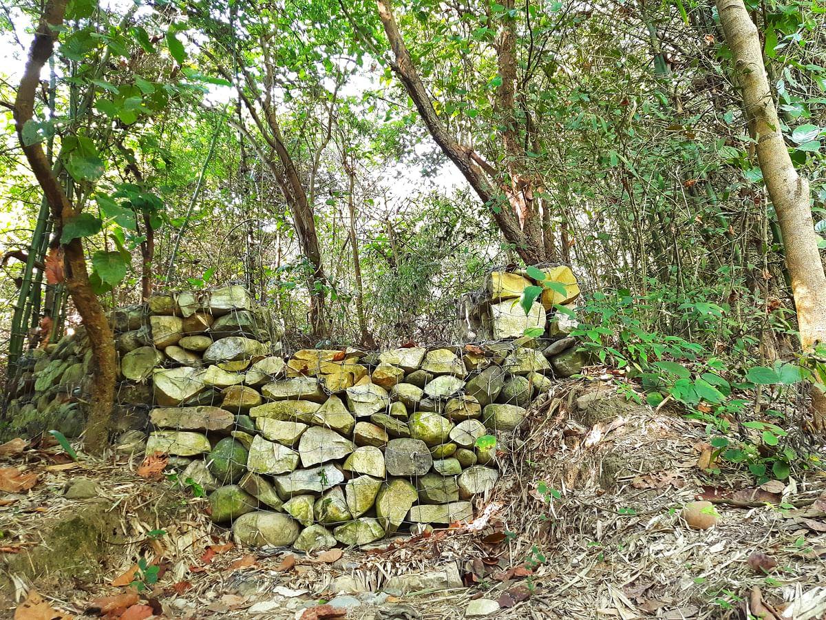 जंगल में पानी रोकने के लिए बनाए गए चेकडैम