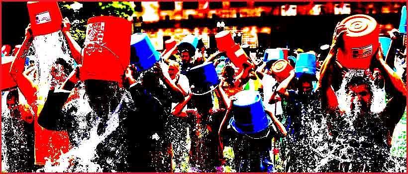 Ice Bucket Challenge: Celebrity vs Cause?