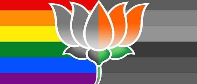 As a gay man, I'm glad BJP lost in Bihar