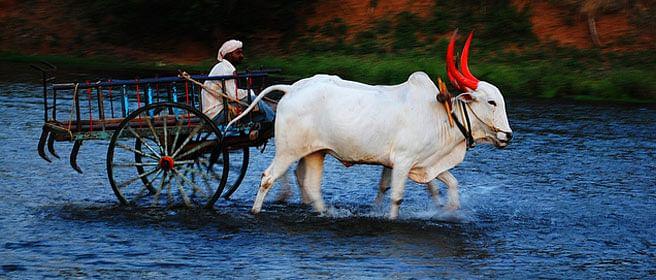 Here's why Arun Jaitley's irrigation plan has failed 66 million farmers